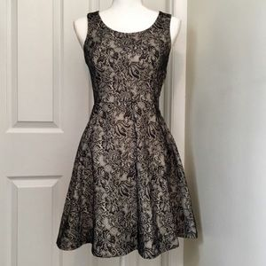 EXPRESS Fit and Flare Lace Dress (XS)